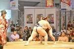 Sumo's Wrestlers Are Called Rikishi