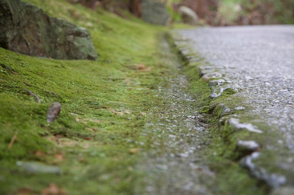 """京都经典景点介绍:岚山、嵯峨""""旅游路线"""