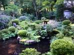 Sanzen In Temple Stroll Through A Japanese Garden In ōhara Kyoto