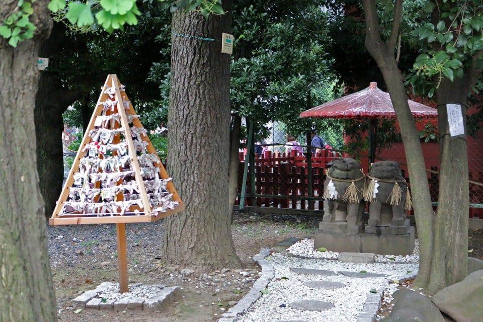 浅草神社 13