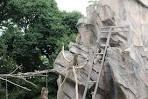 ueno zoo monkey 5