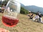 wine mercian 3