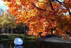 Autumn_20151029-3