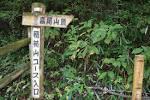 尾山 登山 高 高尾山の歩き方