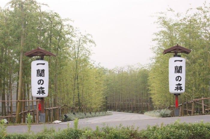 ichirannomori-photo1