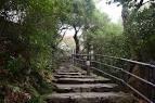 金 華山 登山 道