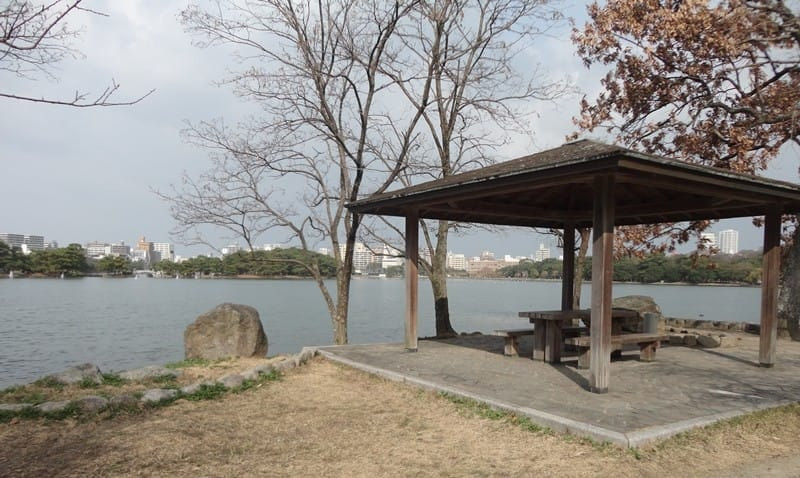 Connect With Nature and Art in Ōhori Park, Fukuoka ...