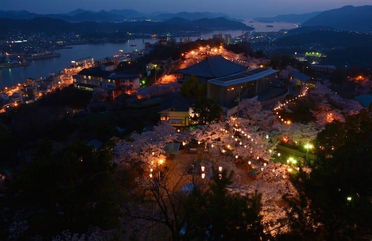 จุดชมดอกซากุระบาน ประเทศญี่ปุ่น จังหวัดฮิโรชิม่า