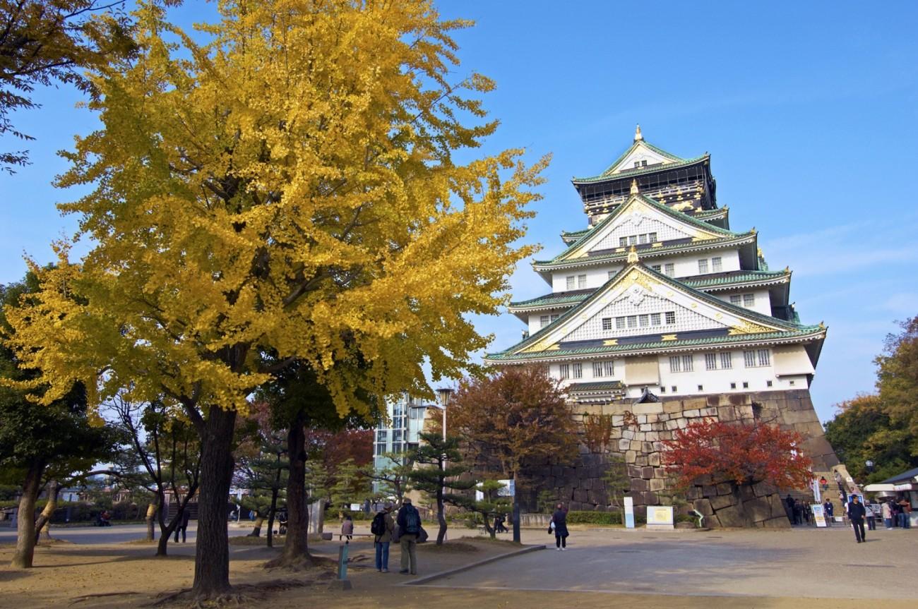 Osaka Koyo photo05