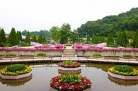 Công viên hoa