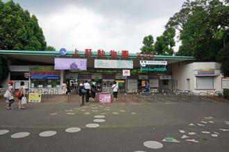 【上野.景點】來去擁有日本和世界各地動物的「上野動物園」!