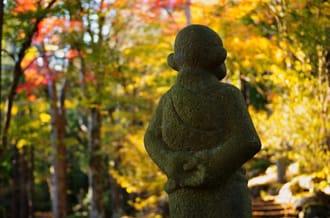 2 ที่เที่ยวที่ฮาโกเนะในฤดูใบไม้ร่วง「วัดโจอันจิ」และ「เนินเขาเซ็นโกคุ」