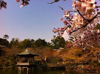 成田空港から徒歩10分。歴史と伝統と神々が棲む「大本山成田山」