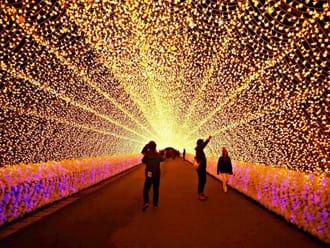 『三重 絕景』前所未有的規模 日本最大夢幻彩燈展 名花之里