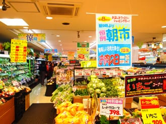 Let's Buy Something from a Japanese Supermarket! - Housewife's Advice -