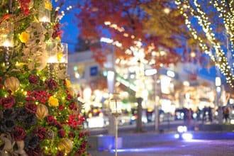 <div class='captionBox title'>イルミネーションにスケート。日本のクリスマスの過ごし方3選【2017~2018年版】</div>