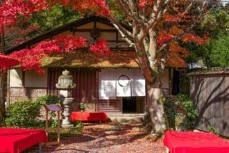 京都・白龍園 - 1日100人限定、知る人ぞ知る秘密の庭園