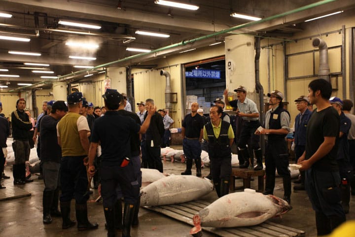 How to See the Tuna Auctions at Tokyo's Tsukiji Fish Market