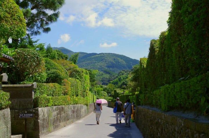 九州最の南端「鹿児島県」ってどんな所? ー自然編ー