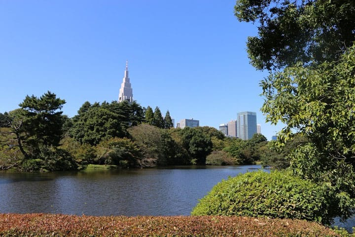 Getting The Most Out Of Your Shinjuku Gyoen Visit!