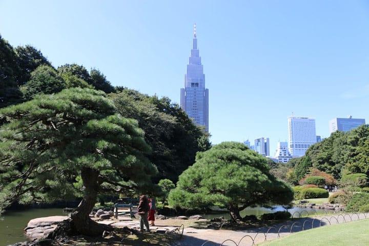 วิธีเดินทางไปสวน ชินจูกุเกียวเอ็น (Shinjuku Gyoen) ทั้งทางประตูชินจูกุ ประตูโอคิโดะ และประตูเซ็นดากะยะ