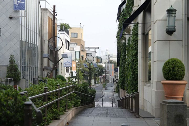 Top 7 Souvenir Shopping Spots In Omotesando And Harajuku!