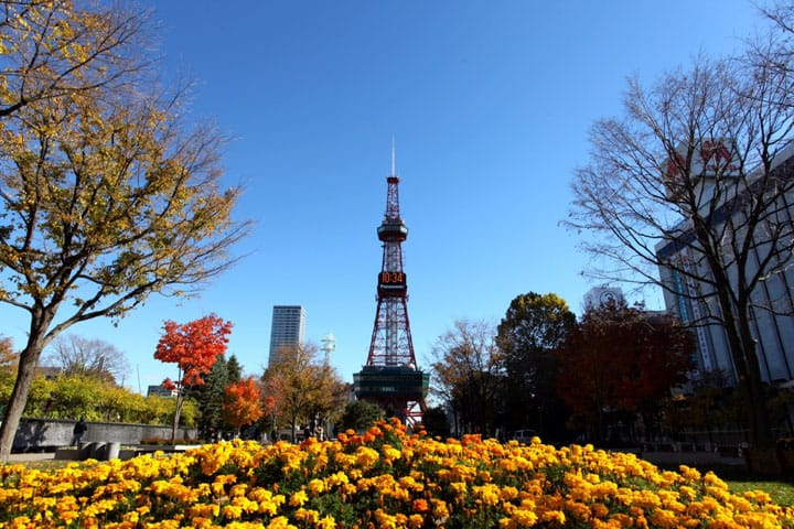 The Symbol Of Sapporo: Let's Visit The Sapporo TV Tower!