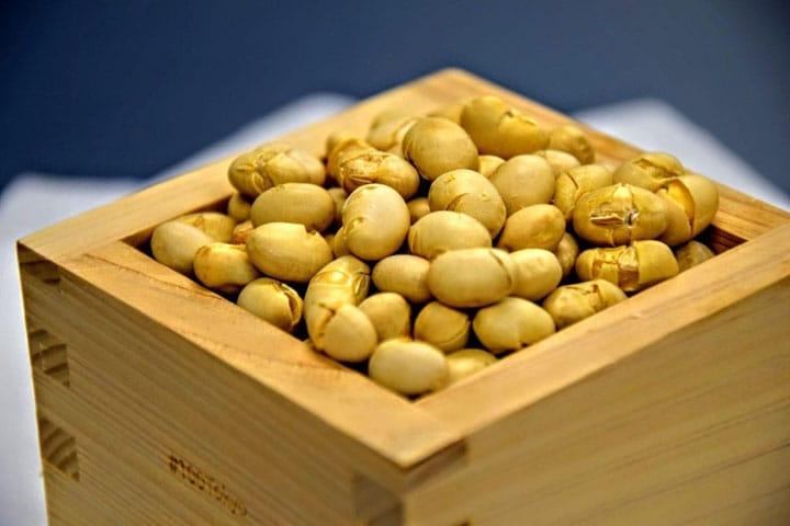 日本のことば事典「節分・豆まき」