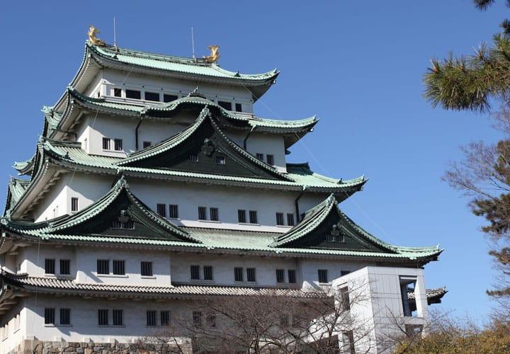 Nagoya Castle - Let's Go See The Symbol Of Nagoya
