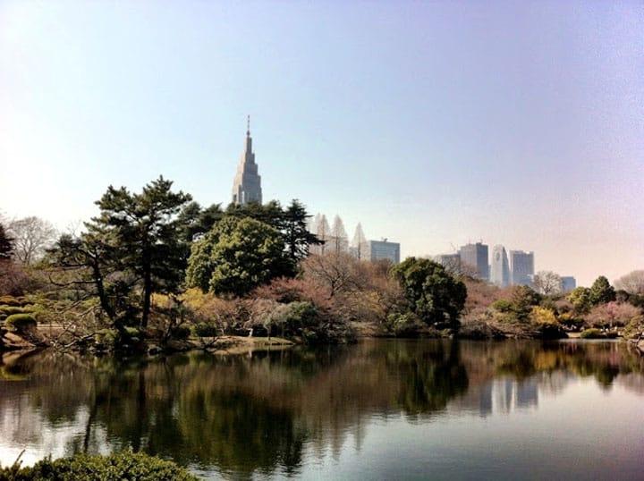 日式中央公园,探访新宿御苑