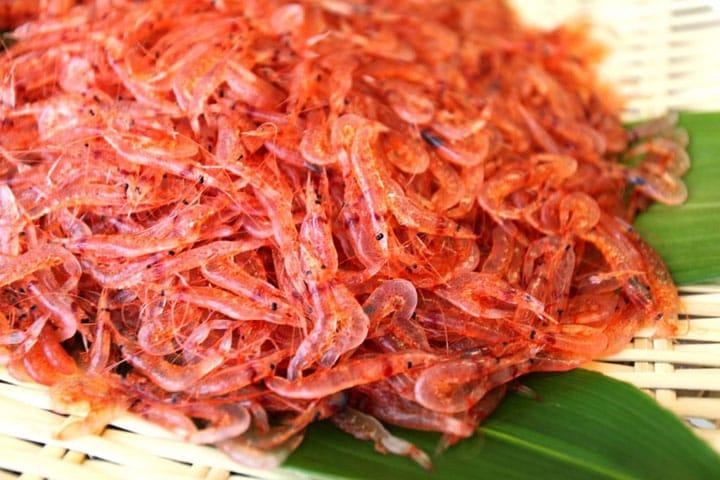 世界で食べられるのは静岡だけ!静岡市、由比港の獲れたて「生桜えび」