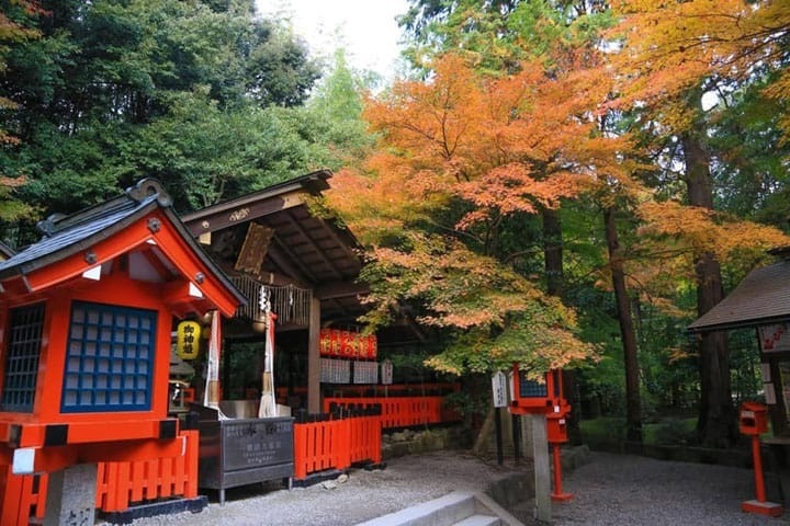 Let MATCHA Design Your Trip To Japan! Part 2 - Travel Tips for Kansai
