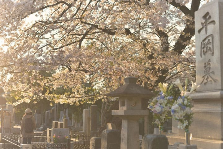 Cemetery Landscape: Feel Nostalgia And Tranquility At Yanaka Cemetery, Nippori