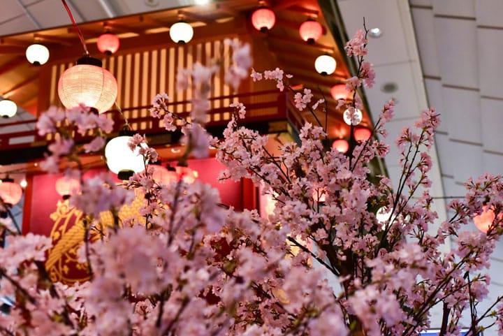 春櫻佔據羽田機場 紅眼班機過夜不無聊