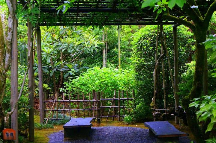 【雨の日】嵯峨野「落柿舎」で、俳句を彩る雨音を聴く