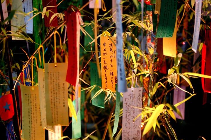 【ฤดูร้อน】พรวิเศษที่แท้จริงของเทศกาลทานาบาตะ! มาอธิษฐานกับค่ำคืนอันยาวนานนี้กันเถอะ