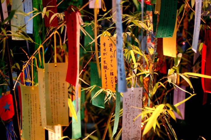 Wish Upon A Tanzaku During The Tanabata Festival!