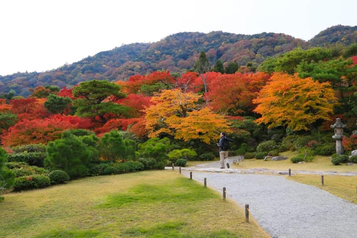 A Kyotoite's Recommended Travel Route For Saga And Arashiyama