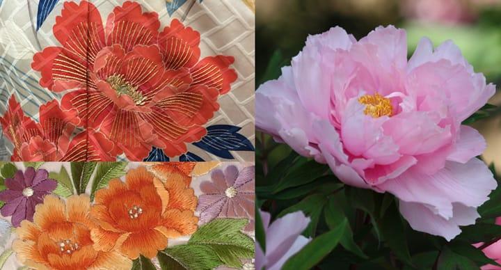 着物(きもの)の 絵(え)の 花(はな)は 何(なん)の 花(はな)ですか