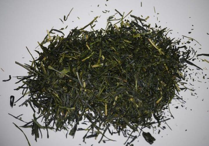 いまさら聞けない 「日本のお茶の種類」