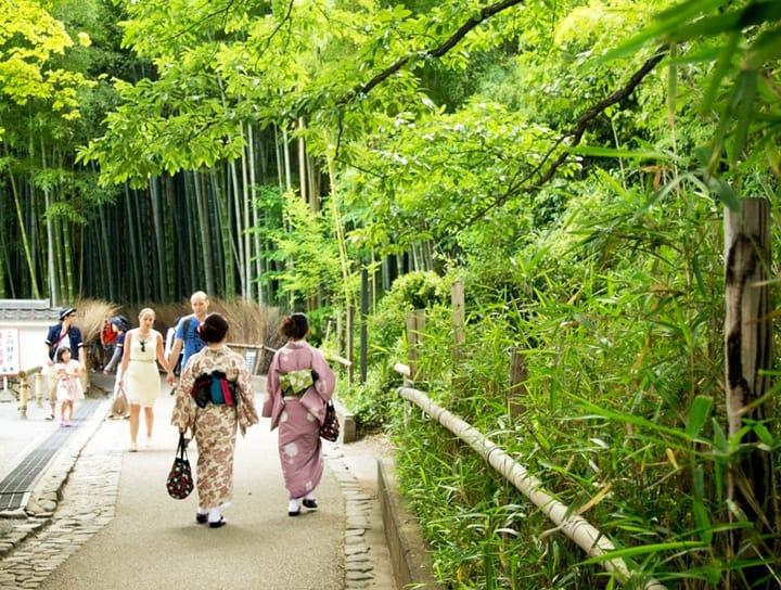 사가노 토롯코 열차로 둘러보는 초여름의 쿄토・아라시야마 여행