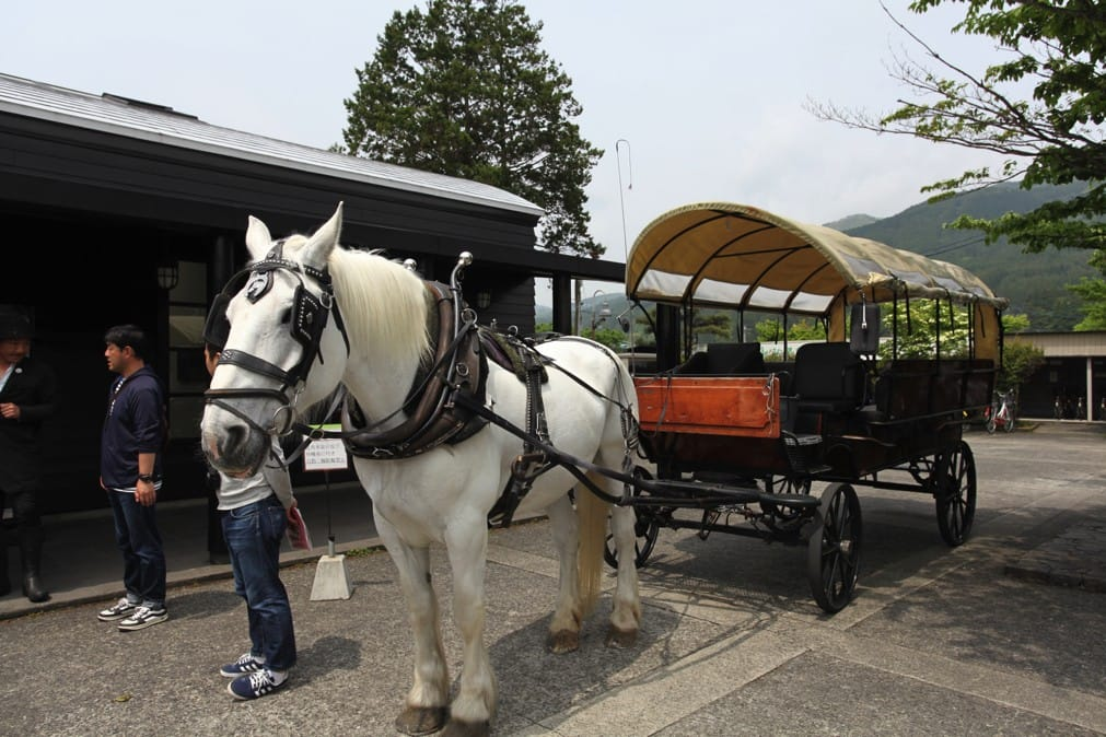 Horse Drawn Carriage Tours In Yufuin A Memorable