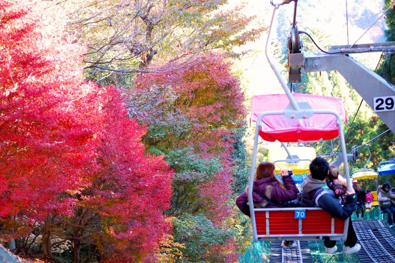5 spectacular places to see the autumn leaves near tokyo for Tokyo what to see