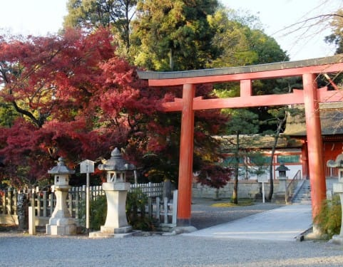 Japanese Religion: What's The Difference Between Temples And Shrines