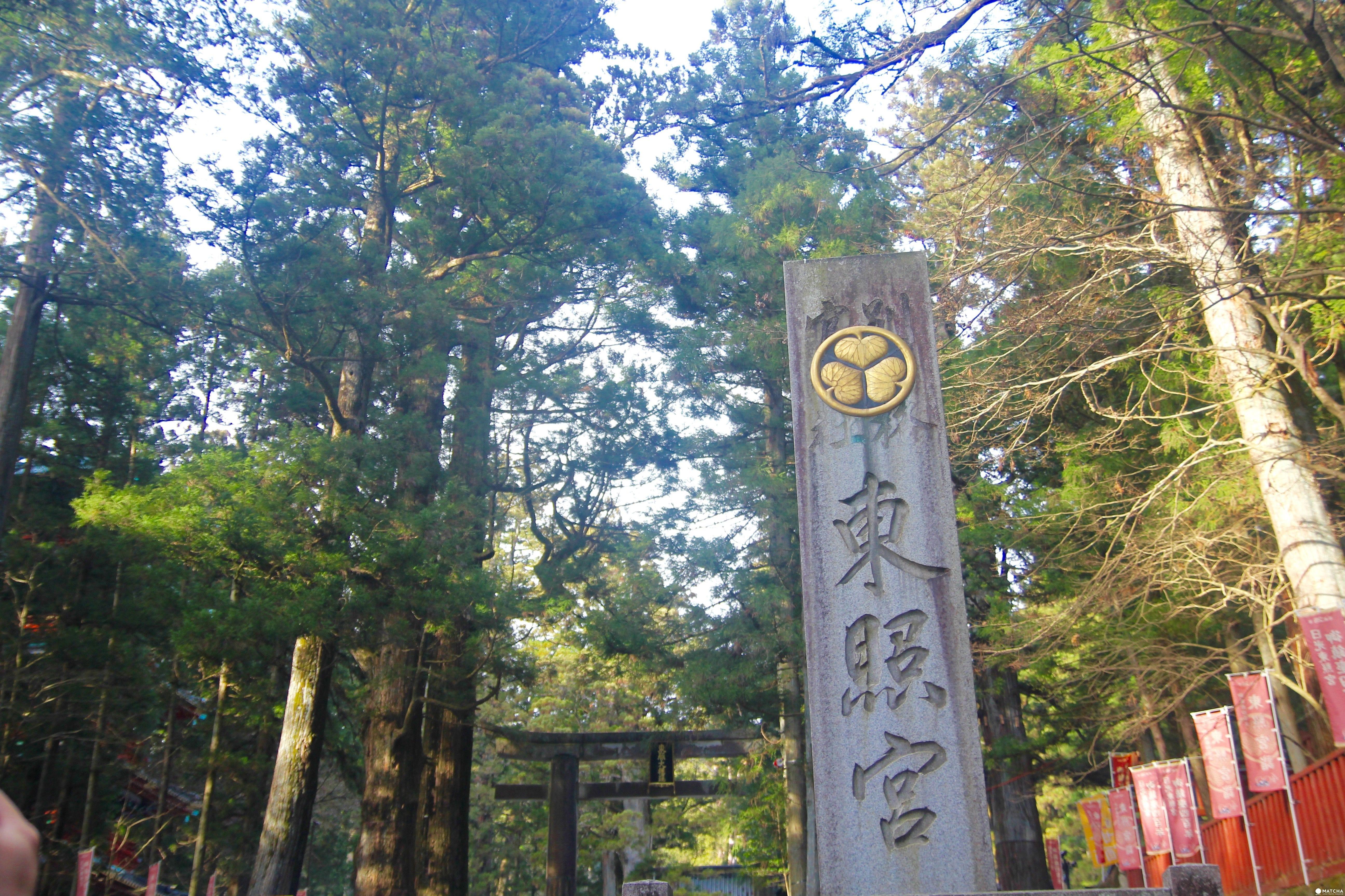 不用再繞到東京,教你如何從機場直衝世界遺產「日光東照宮」
