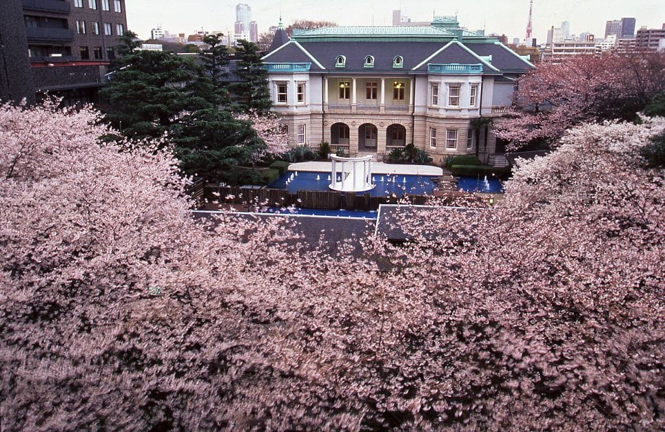 Premium Events To Fully Enjoy Japan's Spring