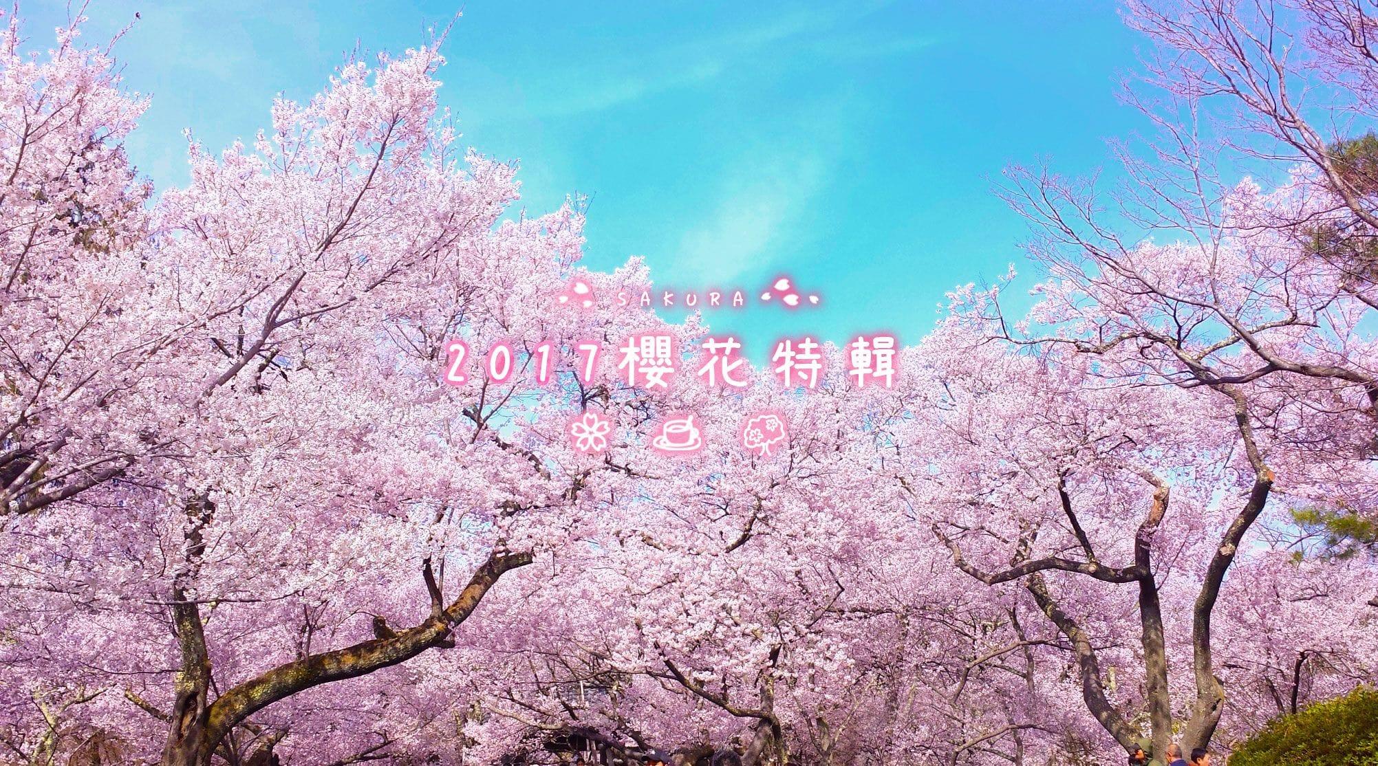 2017年櫻花特輯