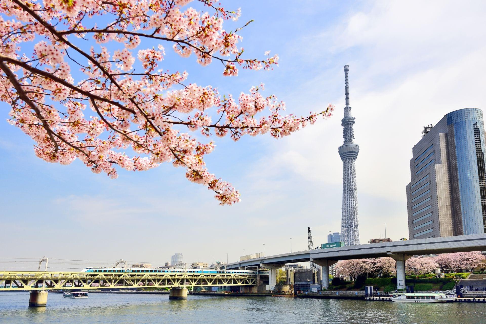 日本必看景點28選