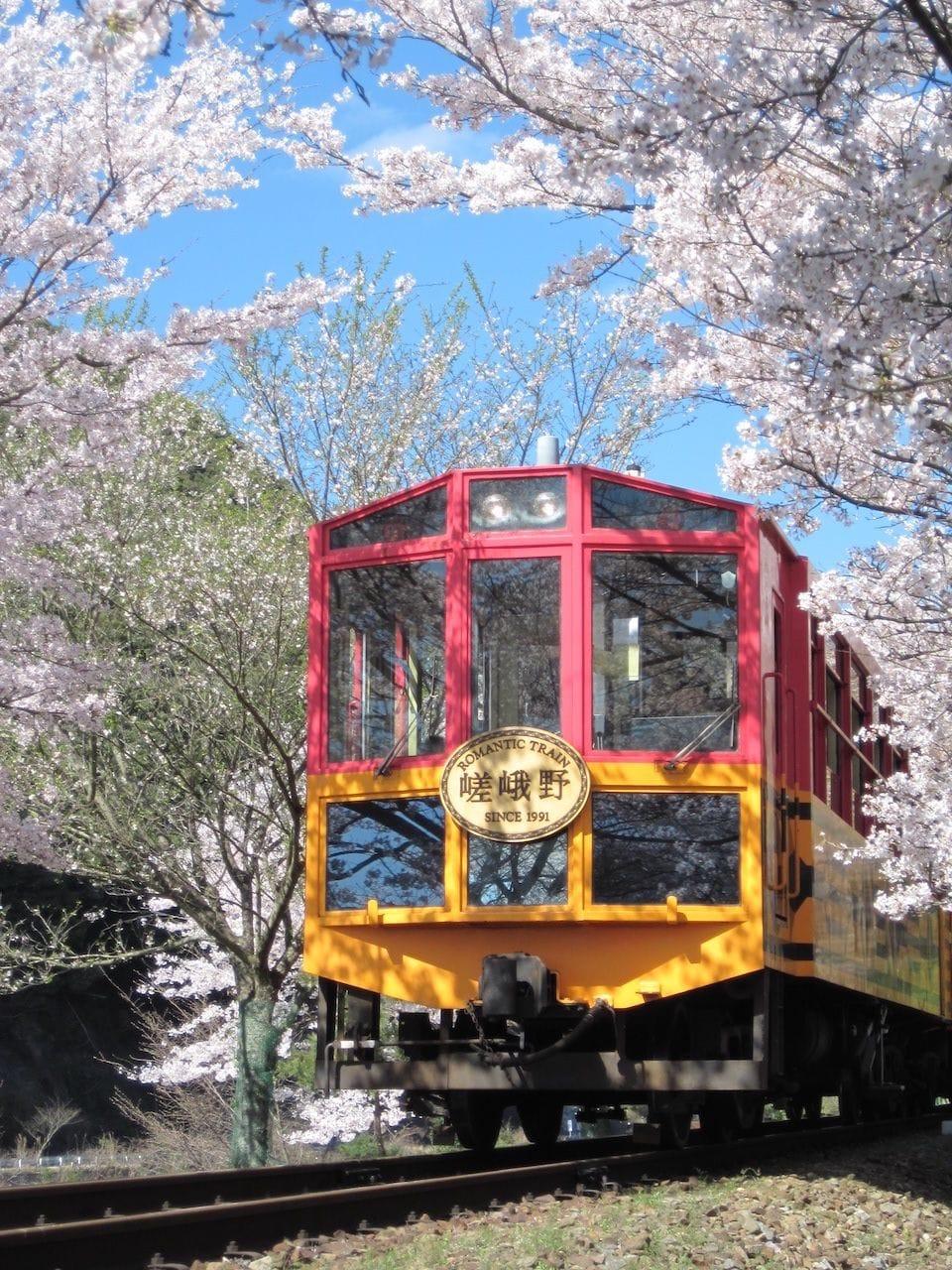 京都でゆっくりお花見を楽しみたい方必見!京都・亀岡のお花見スポット5選