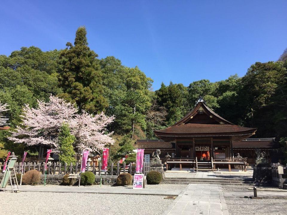 京都でゆっくりお花見を楽しみたい方必見!京都・亀岡の桜スポット5選